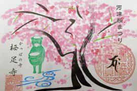2020年🌸河津桜まつり