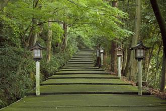 S207 ~日本三霊山を訪ねて・白山三馬場を巡る~ 夜行1泊2日10 ...